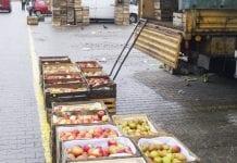 Między skrzynkami… aktualne ceny jabłek na rynkach hurtowych