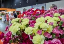 Nowość na Flower Expo Polska 2017 – Polski Pawilon