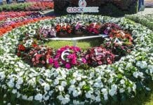 Sukces FlowerTrials®
