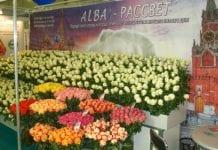 Rosyjscy kwiaciarze zadowoleni