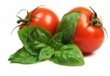 We Francji – więcej pomidorów spod osłon