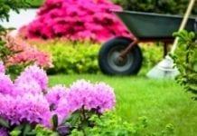 Wiosna w ogródkach po nowemu