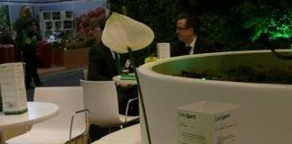 Ogrodnicze dekoracje stołu