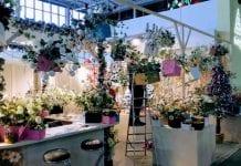 Trwają targi Gardenia 2018