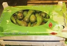 Niemiecki handel gruszkami