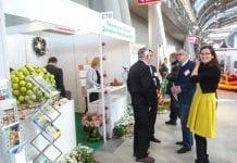 Ogrodnicy samodzielnie w Kielcach