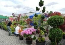 40. Jesienna Wystawa Ogrodnictwa