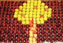 MTAS FruitPro na półmetku