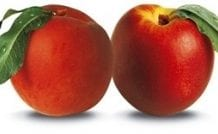Fruitness, enjoy it!