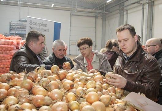 Podczas spotkania omówiono i zaprezentowano odmiany cebuli firmy Syngenta