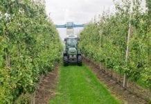 Handel międzynarodowy pestycydami rośnie