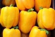 Hiszpański eksport warzyw poniżej oczekiwań