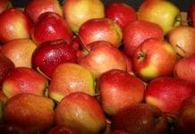 Błędne oznakowanie kraju pochodzenia warzyw i owoców w Biedronce