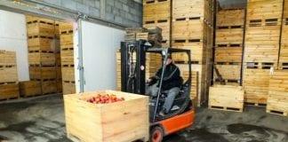 Zapasy jabłek w Polsce i Europie według WAPA