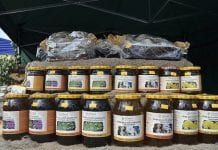 Święto Owoców i Produktów Pszczelich Gminy Pleśna