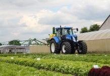 PIORIN: bezpieczne stosowanie środków ochrony roślin