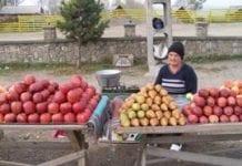 Większy import produktów ogrodnictwa w Rumunii