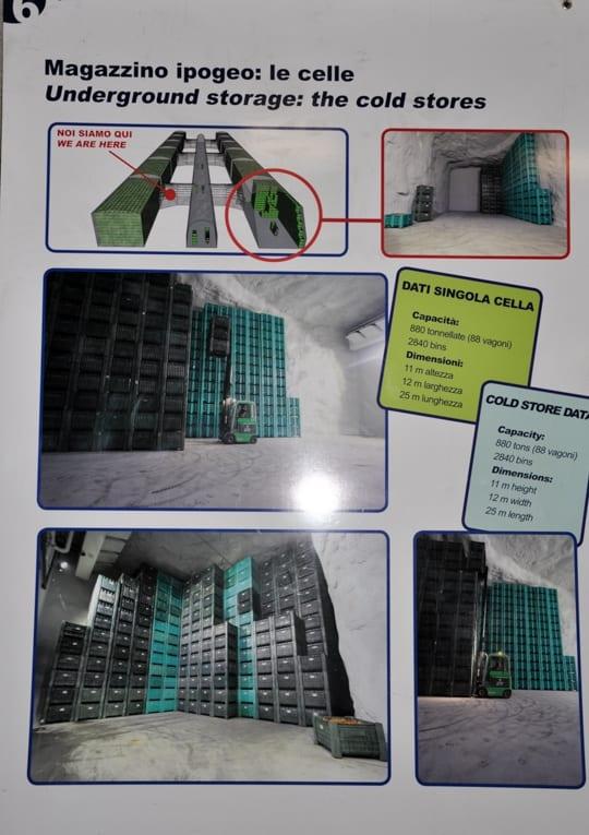 W obiekcie grupy Melinda - komory przechowalnicze wydrążone w skale