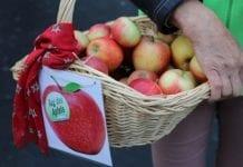 Szwajcarski Dzień Jabłka po raz 25.