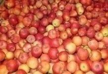 Brazylijski rynek jabłek