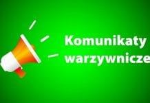 Nowa aplikacja dla producentów: komunikaty warzywnicze