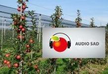 Aplikacja Audio Sad. Teraz artykuły sadownicze czyta lektor
