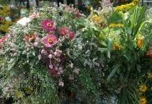 Flower Expo Polska 2017