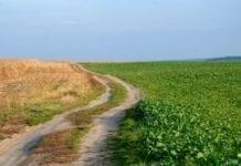 Rosja ma nowego ministra rolnictwa