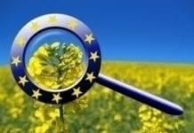 Błędy przy rozdziale unijnych pieniędzy na rolnictwo