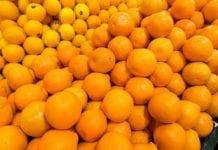 W tym sezonie większy import cytrusów, mniejszy m.in. kiwi i brzoskwiń
