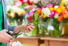 Krakowska Bonarka w kwiatach. Egzamin dyplomowy z florystyki