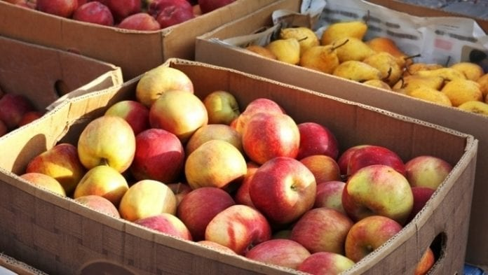 Jabłka Europa Wschodnia