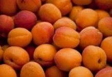 Wzrost eksportu armeńskich owoców i warzyw