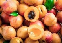 Hurtowe ceny owoców i warzyw w Bułgarii