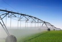 Inżyniera rolnicza – jak wypadamy na tle świata?