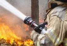 Leśnicy apelują o nieużywanie ognia w lasach