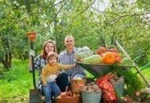 Gospodarstwa rodzinne dostarczają 80 proc. żywności