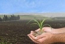 Wystarczy pieniędzy dla młodych rolników