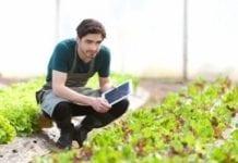 Sondaż: polski rolnik to nowoczesny tradycjonalista