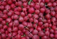 W Broniszach coraz więcej krajowych nowalijek, ceny jabłek bez zmian