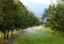 Naukowiec: woda – coraz ważniejsza dla rolnictwa i klimatu