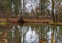 W Opolskiem program mikroretencji sposobem na suszę