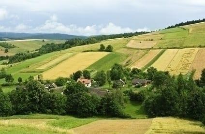 Biznes na wsi