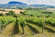 """San Marino będzie pierwszym """"eko"""" krajem na świecie"""