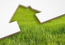 Zielone dachy i tarasy mogą dostarczać wodę