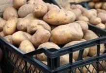 W środę protest producentów ziemniaków