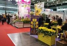 Gardenia 2018, czyli obowiązkowy przystanek przed sezonem ogrodniczym