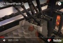 Roboty. Pakowanie jabłek rumieńcem do góry