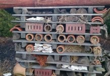 Trzy dni po odbudowie ponownie spłonął hotel dla owadów zapylających