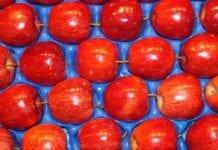 Tajwan zaimportuje mniej jabłek